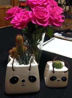 植物女子?!
