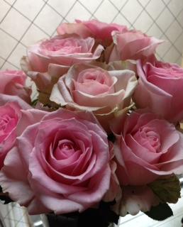 お花のパワー